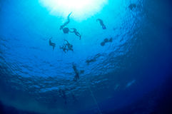 Blue Hole freediving training Royalty Free Stock Images