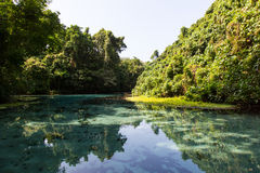 Blue Hole in Paradise, Vanuatu Stock Photo