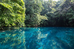 Blue Hole in Paradise, Vanuatu Royalty Free Stock Image