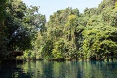Blue Hole in Paradise, Vanuatu Stock Photo