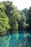 Blue Hole, Vanuatu Stock Image
