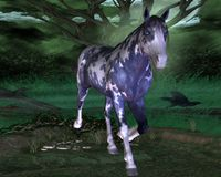Blue horse with blue eyes. In the forest with crows and spiders - blue horse with blue eyes Royalty Free Stock Photos