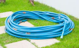 Blue hose. In the garden Stock Photography