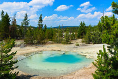 Blue hot spring pool, Yellowstone, Wyoming Royalty Free Stock Photo