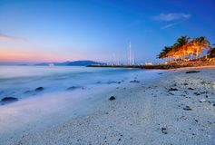 Blue Hour at the Beach with Coconut Tree Royalty Free Stock Photos