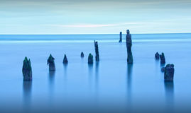 Blue hour sea landscape. As old barnacle covered posts pertrude artistically from the ocean water Royalty Free Stock Photography