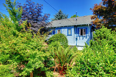 Blue house back yard with garden Royalty Free Stock Image