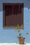 Blue house with brown window, typical colorful of Trancoso Royalty Free Stock Image