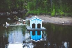 Blue house for ducks and water. Stock Photos