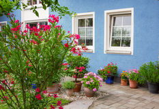 Blue house front with decorative mediterranean flower pots Royalty Free Stock Image