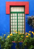 Blue House and Gold Marigolds Stock Photography