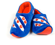 Blue house slippers Stock Image
