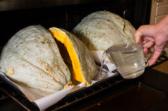 Blue Hubbard squash being prepared Royalty Free Stock Photography