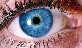 Blue Human Eye Stock Images