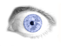 Free Blue Human Eye Isolated Photo Royalty Free Stock Photos - 20018