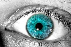 Blue human eye macro close-up background Stock Images