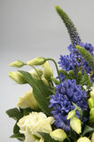 Blue hyacinth and yellow tulips in vase Royalty Free Stock Image