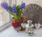 Blue hyacinths in basket s and a lantern Royalty Free Stock Photos