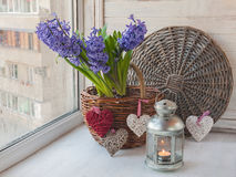 Blue hyacinths in basket s and a lantern Stock Photography