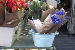 Blue hyacinths Royalty Free Stock Photos