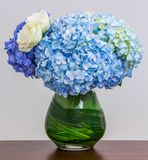 Blue Hydrangea bouquet. In glass vase on wood table Stock Photos