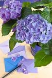 Blue hydrangea in vintage pot Stock Photos