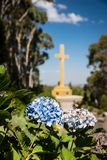 Portrait orientation Mt Macedon Memorial Cross with hydrangea flower foreground Royalty Free Stock Images