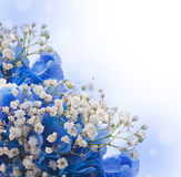 Blue hydrangeas and white flowers Royalty Free Stock Images