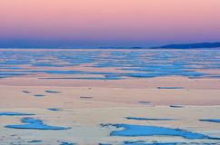 Blue ice of Baikal lake under pink sunset sky royalty free stock photos
