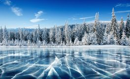 Blue ice and cracks on the surface of the ice. Frozen lake under a blue sky in the winter. The hills of pines. Winter