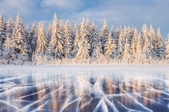 Blue ice and cracks on the surface of the ice. Frozen lake under a blue sky in the winter. The hills of pines. Winter Stock Images