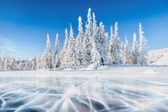 Blue ice and cracks on the surface of the ice. Frozen lake under a blue sky in the winter. The hills of pines. Winter Stock Photo