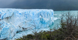 Blue ice glacier Perito Moreno and lake in Patagonia. Blue ice glacier Perito Moreno in Patagonia, Argentina. Deep blue ice blocks of the biggest mountain royalty free stock photos