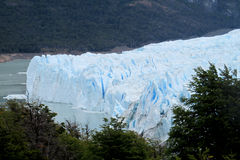 Blue ice patagonian glacier Stock Photography