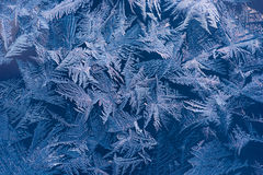 Blue ice pattern Stock Photos