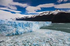 Blue ice Perito Moreno Glacier. Patagonia. Stock Image