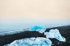 Blue icebergs on the beach with black volcanic sand. Royalty Free Stock Image