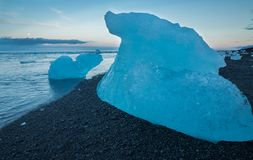 Blue icebergs on the beach Stock Images