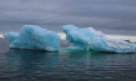Blue Icebergs in the fjord Royalty Free Stock Images