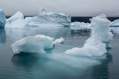 Blue Icebergs in Greenland Royalty Free Stock Photography