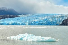 Blue icebergs at Grey Glacier in Torres del Paine Royalty Free Stock Photography