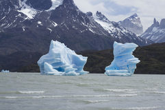 Blue icebergs in Grey Lake, Torres del Paine, Patagonia, Chile. Blue icebergs floating in Grey Lake in Torres del Paine National Park, Patagonia, Chile Royalty Free Stock Images