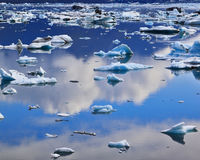 Blue icebergs and ice Royalty Free Stock Photo