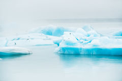 Blue icebergs in Jokulsarlon glacial lagoon, Iceland Royalty Free Stock Images