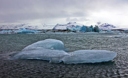 Blue Icebergs of Jokulsarlon with Snaefell Mountain, Iceland Stock Photo