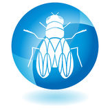 Blue Icon - Fly. A 3D blue icon button - fly Stock Images