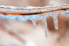 Blue on an icy day Royalty Free Stock Photos