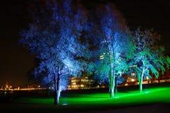 Blue illuminated trees. In the city stock photos