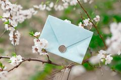 Blue invitation envelope with a wax seal, a gift certificate, a postcard, a wedding invitation card on the background of. Blooming flowers stock photos
