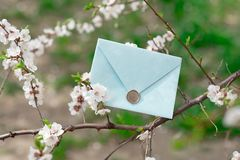 Blue invitation envelope with a wax seal, a gift certificate, a postcard, a wedding invitation card on the background of. Blooming flowers stock images